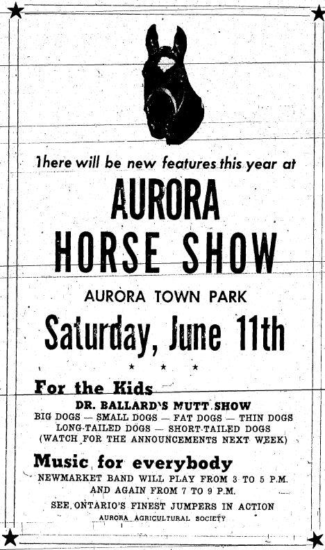 Une annonce en noir et blanc pour le Concours hippique d'Aurora, avec un texte sous la photo d'une tête de cheval encadrée de deux lignes noires et une étoile noire dans chaque coin.