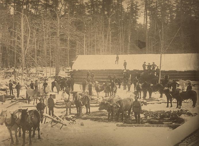 Photographie sépia d'une scène extérieure hivernale dans un camp de bûcherons. On aperçoit un long bâtiment sans fenêtres. Les murs sont construits avec des troncs d'arbres superposés à l'horizontale. Le toit est couvert de neige. Devant le bâtiment, une trentaine d'hommes, une dizaine de chevaux et un attelage de deux bœufs. En arrière-plan, la forêt.