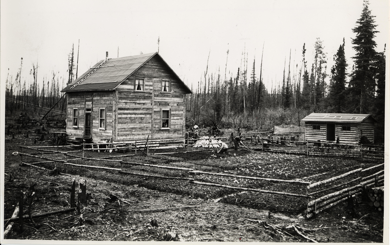 Photographie en noir et blanc d'une habitation de colons. Une maison carrée est recouverte de planches de bois et d'un toit à deux versants droits. À proximité, on retrouve une petite remise en bois rond. À droite de la maison se trouve un grand jardin entouré d'une clôture de perches. Deux adultes y travaillent.