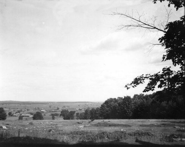 Photographie noir et blanc d'un paysage en été. À l'avant-plan on aperçoit un champ et une vache. Au loin, il y a une plaine et l'on voit quelques maisons et des bâtiments de ferme éparpillés.