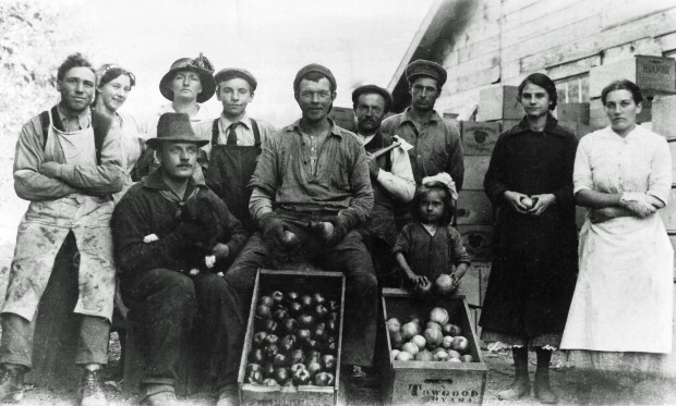Photo en noir et blanc représentant six hommes, quatre femmes et une fillette à l'extérieur. Derrière eux se dresse un édifice en bois. Deux caisses de bois remplies de pommes se trouvent au premier plan; une des caisses est estampillée : « Towgood, Oayama ».