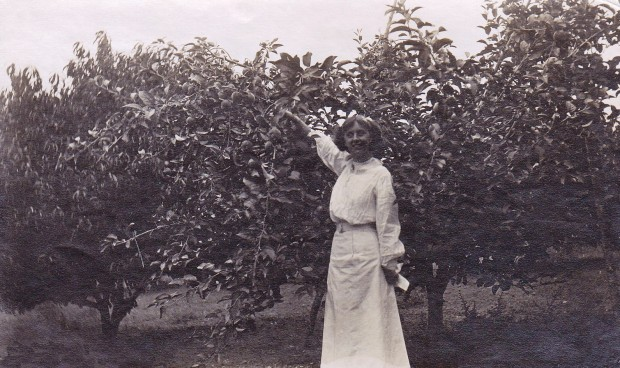 Photo en noir et blanc représentant une jeune femme portant un corsage de style victorien et une longue jupe blanche; elle est devant un arbre de taille moyenne sur lequel elle cueille une pomme.