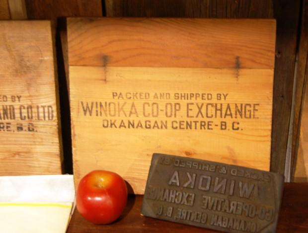 Photo en couleur représentant le flanc d'une caisse de pommes estampillée : « Winoka Co-op Exchange, Okanagan Centre, BC. ». Au premier plan, le tampon et une pomme.