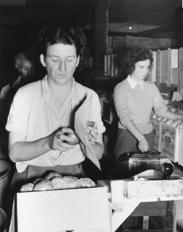 Photo en noir et blanc de trois femmes à l'intérieur d'une station fruitière. La femme qui est au premier plan est en train d'envelopper une pomme dans du papier de soie.