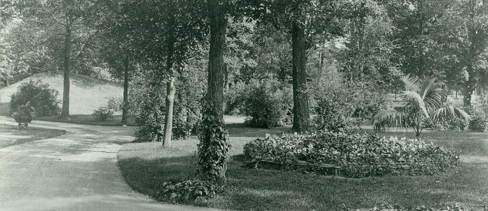 Image noir et blanc d'une route sinueuse entourée d'arbres et de parterres de fleurs luxuriants.