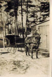 photo en noir et blanc d'un traîneau noir tiré par un poney noir dans la neige.