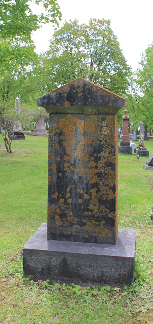 Pierre tombale en pierre sombre recouverte de mousse