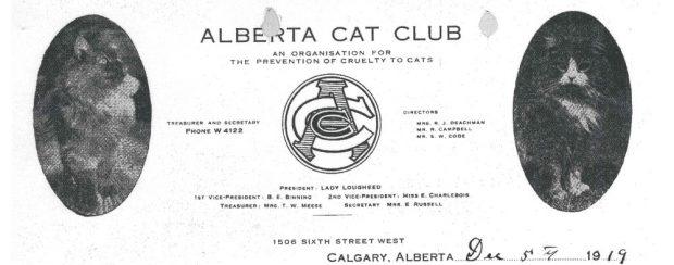 Papier à en-tête du club des chats de l'Alberta avec logo et deux images de chats