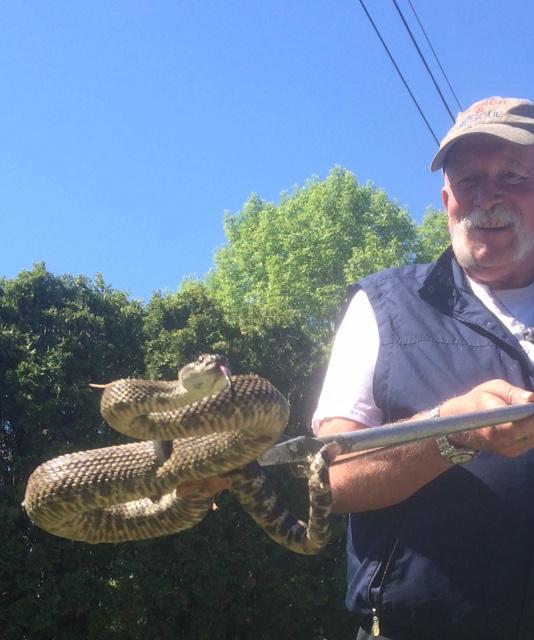 Homme à casquette, souriant, tenant un serpent avec des pinces.