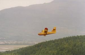 Avion jaune en vol au-dessus d'une forêt verte. Colline en arrière-plan.