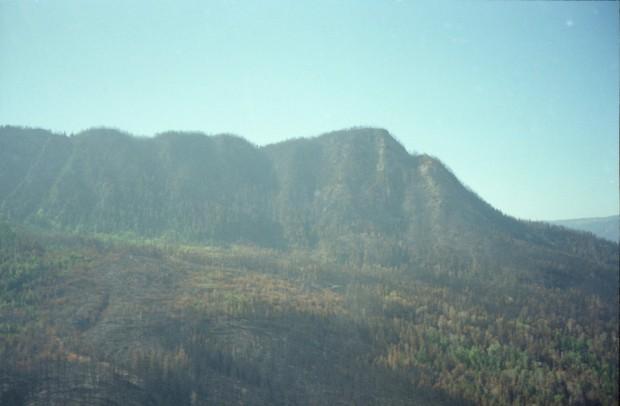 Vue d'une montagne après l'incendie.