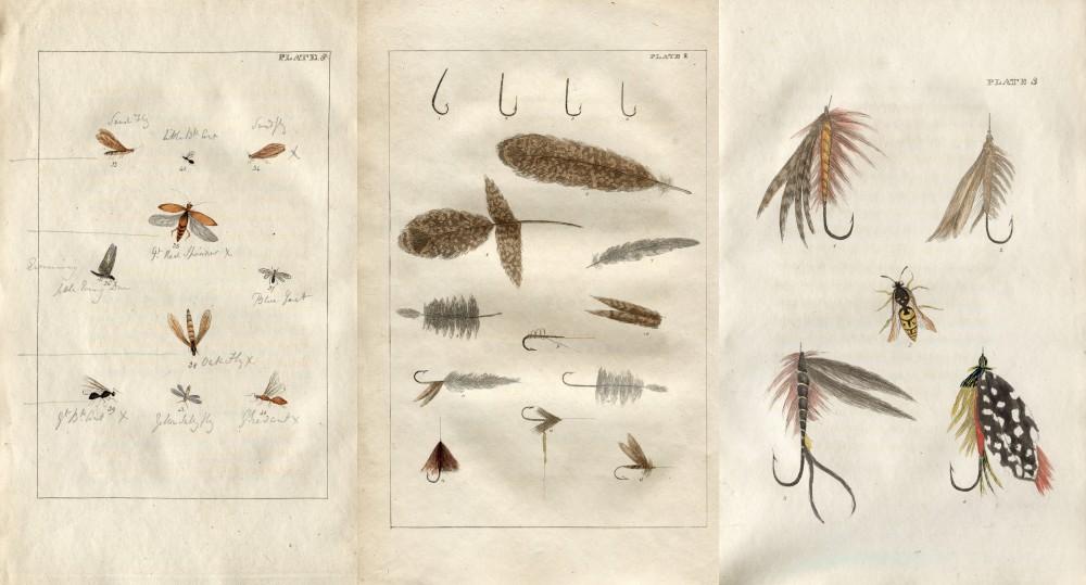 Une variété de mouches a pêche, de mouches et de plumes tirées d'un livre de 1816, il était utilisé par les pêcheurs