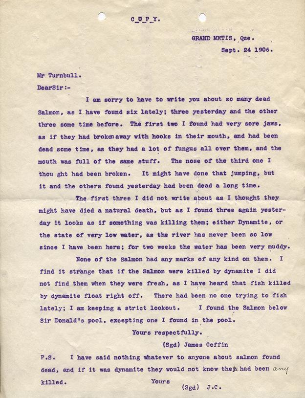 Lettre provenant de James Coffin pour Robert Wilson Reford, concernant l'état du saumon de la rivière Mitis le 24 septembre 1906.