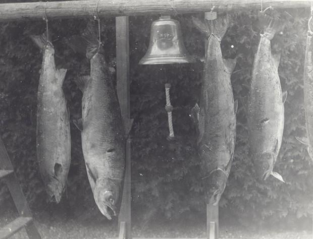 Épreuve argentique de quatre saumons suspendus près de la cloche au devant de la Villa Estevan