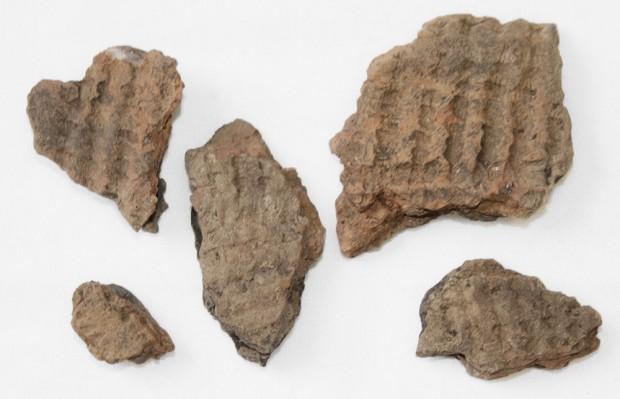 Fragments de poterie datant de la période du sylvicole moyen ancien (2 400 a 1 500 ans avant notre ère)