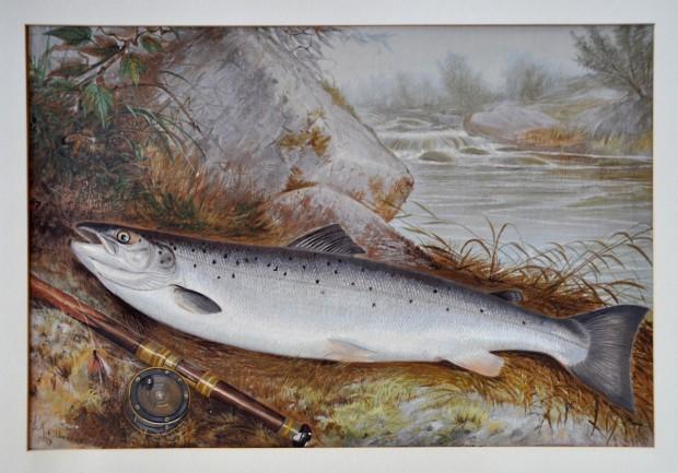Chromolithographie d'une truite, elle est ici représentée reposant près de la canne à pêche et du moulinet par Samuel A. Kilbourne.