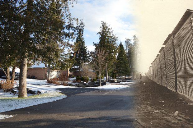 À gauche, une photo contemporaine d'une subdivision résidentielle, à droit une photo en noir et blanc un cour à bois.