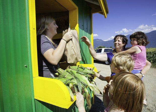 Photo en couleur d'une femme dans un kiosque qui remet un sac de maïs à une femme et ses trois enfants.