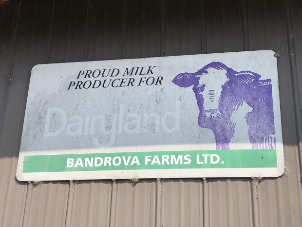 Photo en couleur d'une enseigne de Dairyland chez Bandrova Farms Ltd.