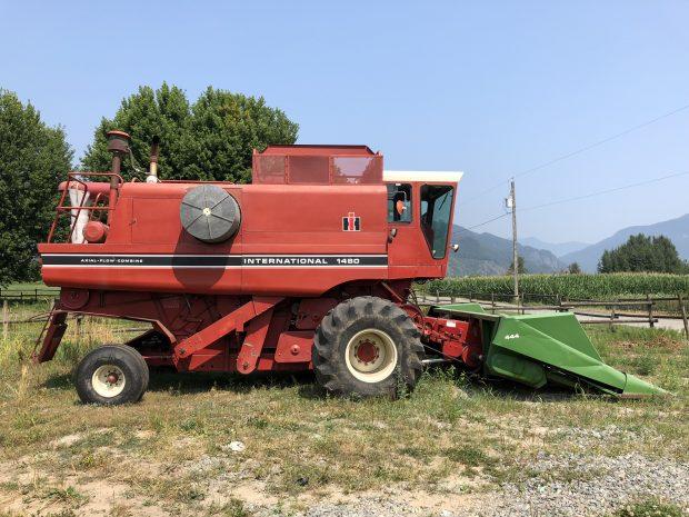 Photo en couleur d'une récolteuse à maïs rouge de la marque International 1480 dans un champ.