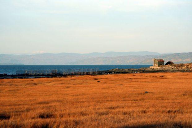 Paysage côtier : au premier plan, le foin de mer est doré. Au centre, le fleuve azur et une pêche à anguilles traversent la photo. À droite, des oies des neiges survolent une vieille maison et en arrière-plan on voit des montagnes.