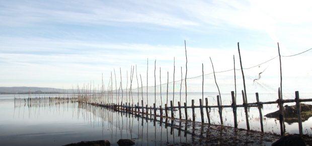 Une longue pêche à anguilles formée de filets fixés à des perches se reflète dans le fleuve.