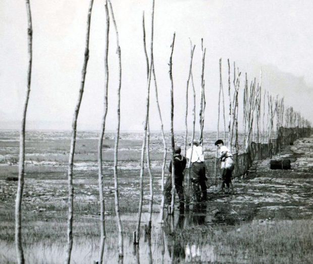 Une rangée de longues perches sur le rivage du fleuve à la base desquelles trois hommes attachent des filets de pêche; photo noir et blanc.