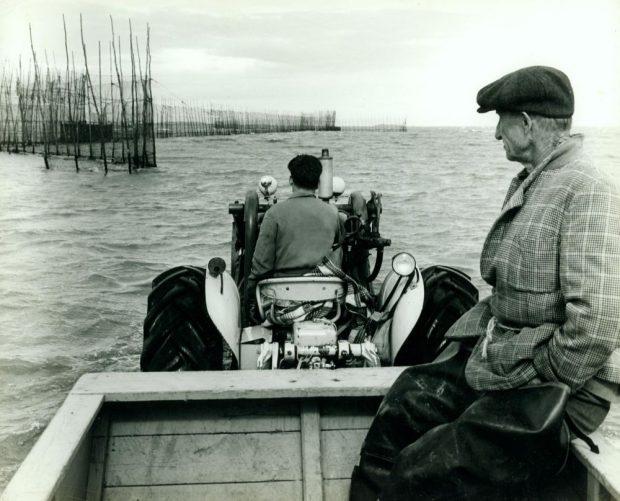 Un homme conduit un tracteur qui avance dans le fleuve vers une pêche à anguilles, l'eau est assez haute. Un second homme, d'un certain âge, est passager dans la remorque du tracteur. Il porte des bottes de pêche et un veston à carreaux tenu fermé par une corde en guise de ceinture; photo noir et blanc.
