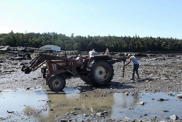 Un tracteur doté d'une tarière est sur la rive du fleuve. Le conducteur du tracteur regarde un autre homme qui guide vers le sol l'outil placé derrière le tracteur.