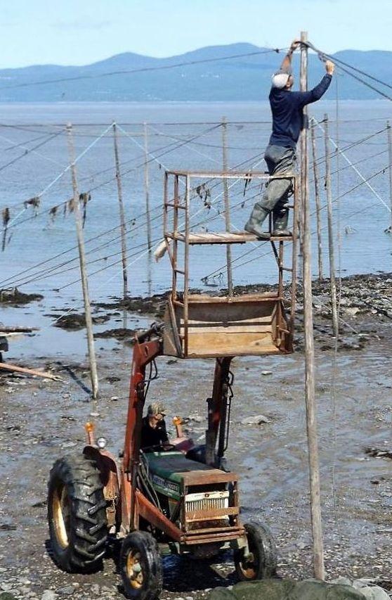Sur la rive du fleuve, un tracteur soulève sa pelle transportant un échafaudage adapté sur lequel un homme est debout. Il attache un câble au sommet d'un poteau. On voit le fleuve au loin.