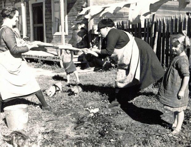 Devant une maison ancienne, une femme tient une anguille par la tête et une autre tire sur la peau du poisson pour la détacher de la chair. Deux fillettes les regardent travailler et trois chats rôdent autour; photo noir et blanc.