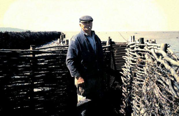 Un homme en habits de travail et casquette, cigarette à la bouche, debout dans ce qui apparaît être un enclos fermé par deux barrières de branchages qui se rejoignent à l'ouverture d'un contenant de bois. Les barrières lui arrivent aux épaules. En arrière-plan le fleuve et une autre barrière de branchage qui s'avance dans l'eau.