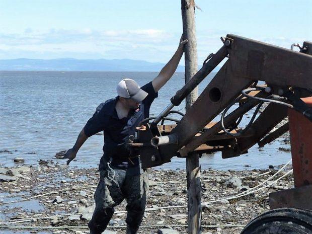 Un homme en vêtements de travail tient un poteau qui est en train d'être planté sur le rivage du fleuve au moyen d'un tracteur.