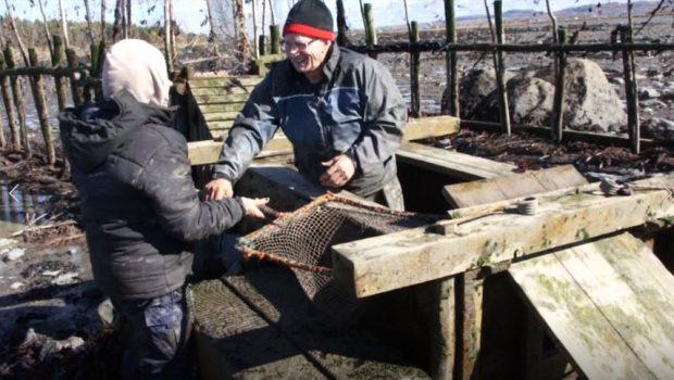 Un homme debout dans un coffre de bois servant à garder les anguilles captives dans la pêche à anguilles saisit un filet monté sur un cadre carré et doté d'un long manche en bois qu'une femme lui tend.