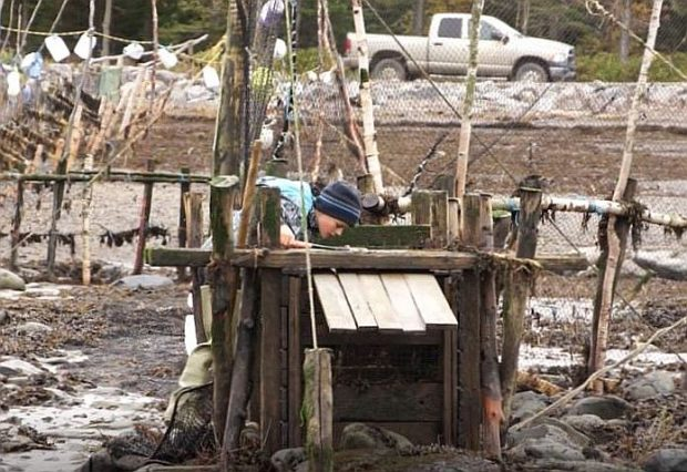 Un jeune garçon en vêtements de pêche est penché au-dessus d'un gros coffre en bois. Il regarde à l'intérieur s'il y a eu des anguilles de capturées.