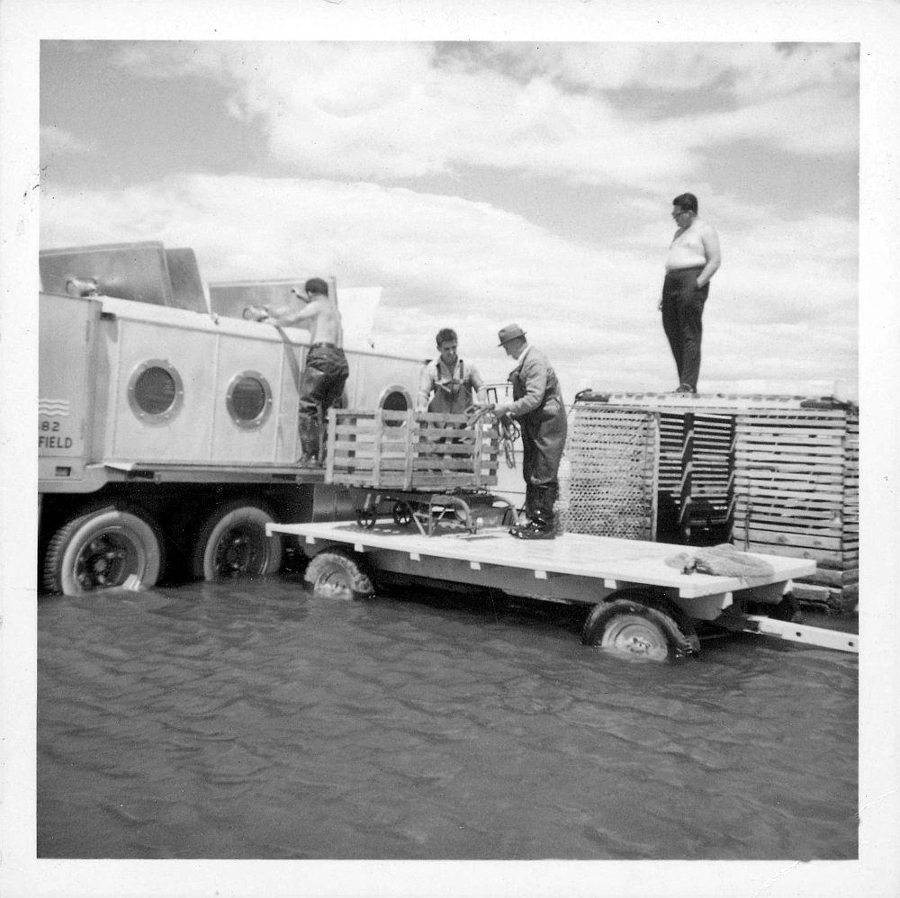 Camion-citerne pour le transport du poisson vivant, doté de hublots et de trappes sur le dessus de la citerne. Le camion est dans l'eau jusqu'aux essieux. Un homme est grimpé sur le côté du camion et regarde dans une des trappes, deux autres sont tout près debout sur une remorque, un quatrième est debout sur le coffre à anguille qui est très grand et regarde la scène; photo noir et blanc.
