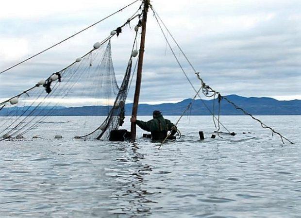 Un homme, dans l'eau jusqu'à la taille et dos au photographe, se tient à un poteau auquel est attaché un filet de pêche.