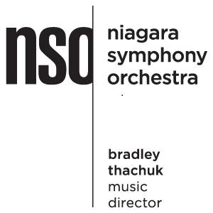 Le logo de NSO 2016