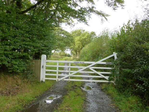 À l'avant-plan, on voit un grand portail de bois blanc portant l'inscription « Leasefields ». Ce portail bloque le passage vers une route de campagne de gravier qui traverse une région boisée.
