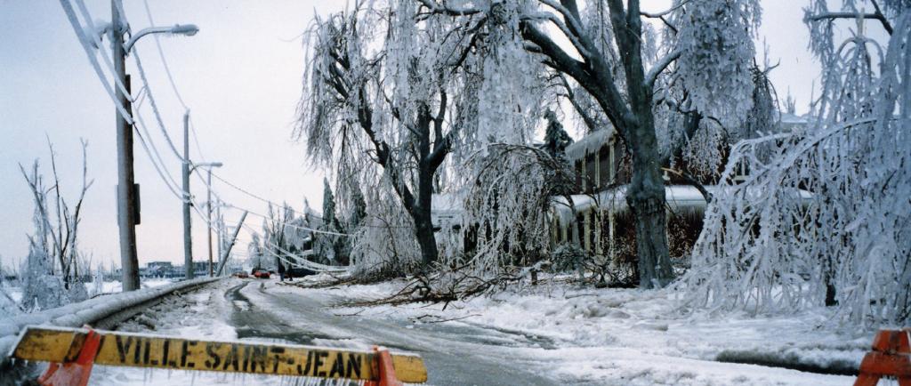 The Champlain road in Saint-Jean was closed because of falling branches and electrical wires that hang. - La rue Champlain à Saint-Jean est fermée à cause de la chute de branches et des fils électriques qui pendent.
