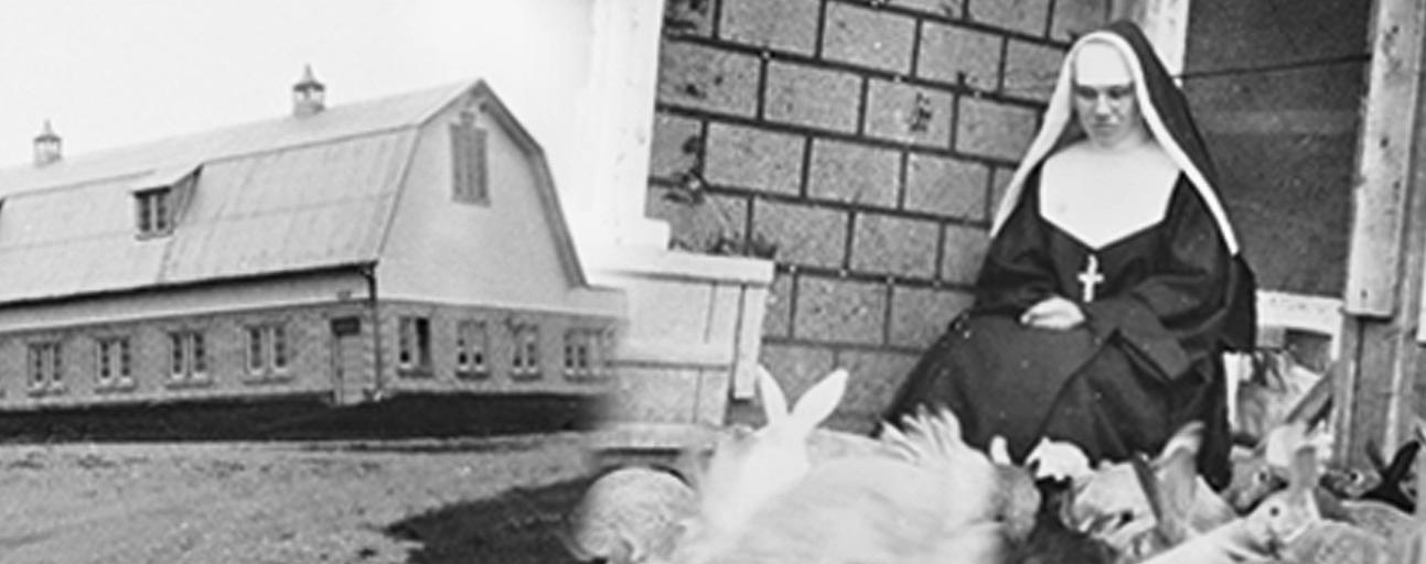 Photo grisâtre d'un bâtiment/Photo en noir et blanc d'une religieuse assise avec des lapins.