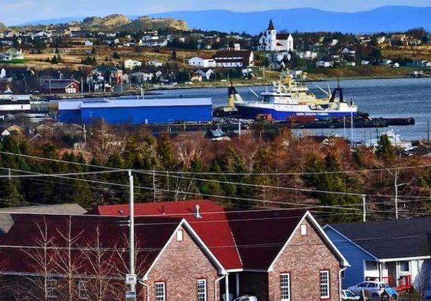 Photographie en couleur d'un navire dans une baie bordée d'arbres et de maisons à l'avant-plan et à l'arrière-plan.